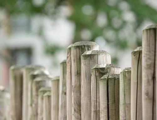 Die Familienstiftung – die Alternative zur Testamentsvollstreckung